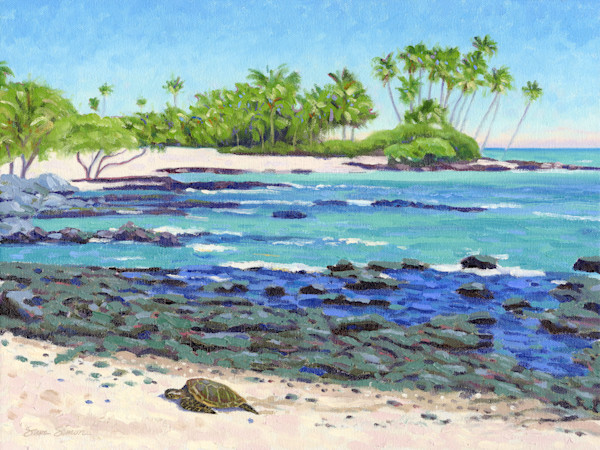 Paintings of the Big Island of Hawaii by Steve Simon