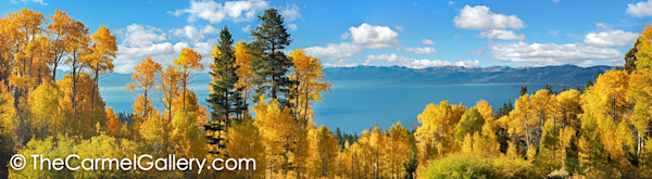 Aspen Panorama