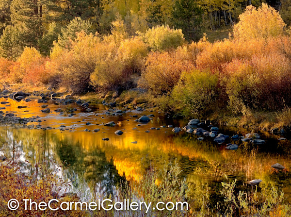 Little Truckee River in Autumn