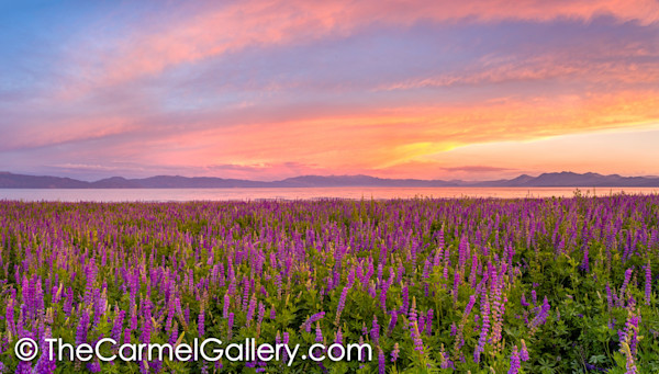 Summer Sunset, Lake Tahoe
