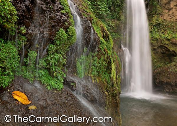 Costa Rican Cascade