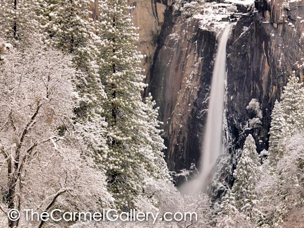 Winter Wonder, Yosemite