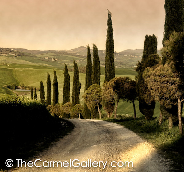Country Lane, Tuscany