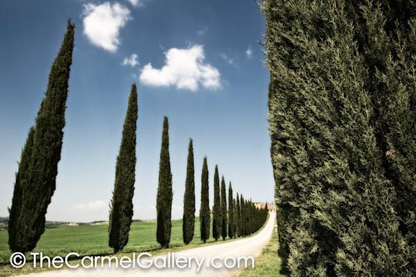 Cypress Strada