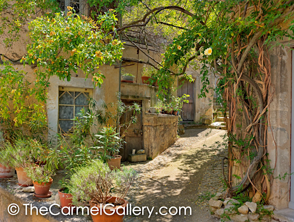 Provence Photos for Sale