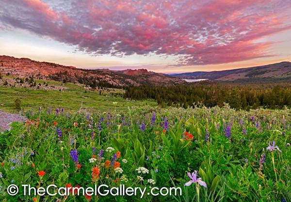Carson Pass Sunrise