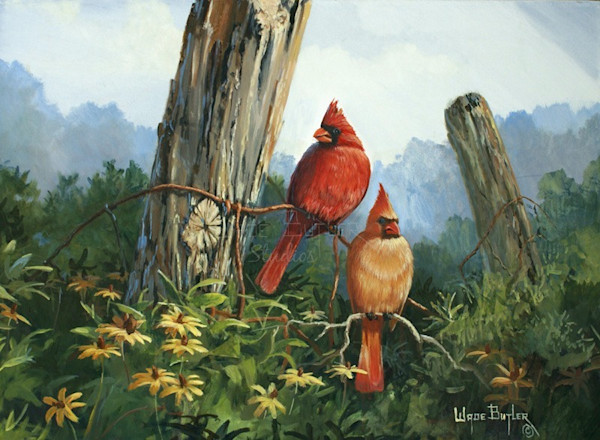 Bird Art and Paintings For Sale