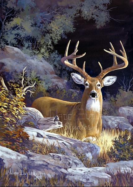 Majestic Moment-Wade Butler Studios/Wade Butler Art