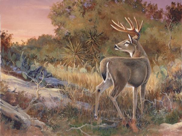 Texas Trophy-Wade Butler Studios/Wade Butler Art