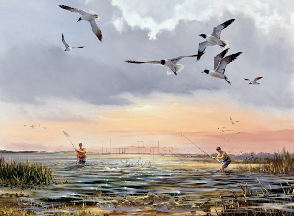 Working the Gulls