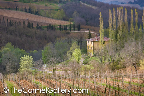 Spring Evening Tuscany