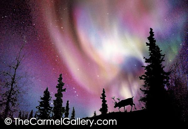 December's Northern Lights