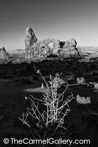Turret Arch BW