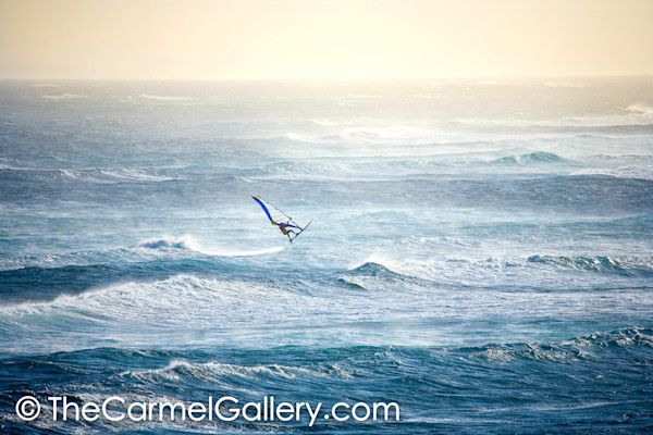 Evening Windsurfer