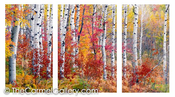 Triptychs by Olof Carmel