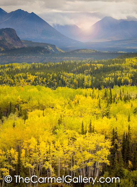 Autumn Light, Denali