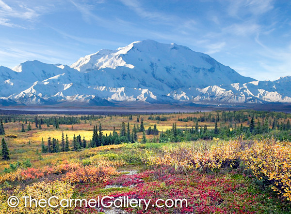 Autumn Morning Denali