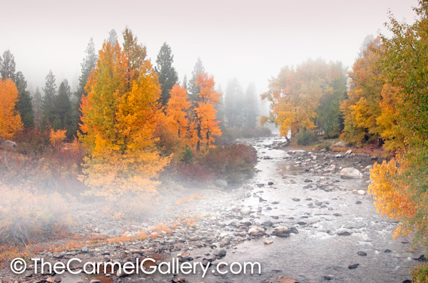 Autumn Mist Truckee River