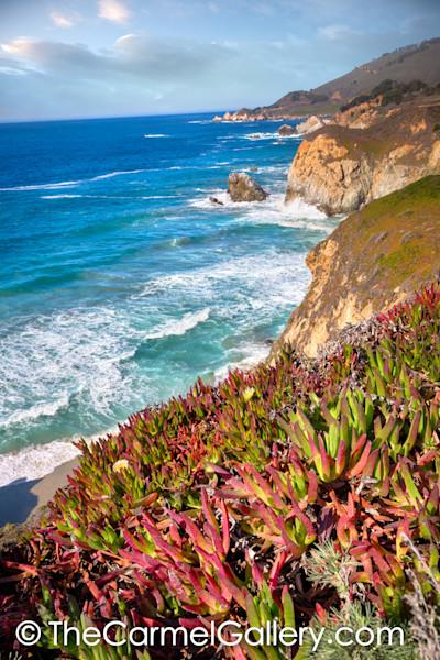 Coast Colors Big Sur