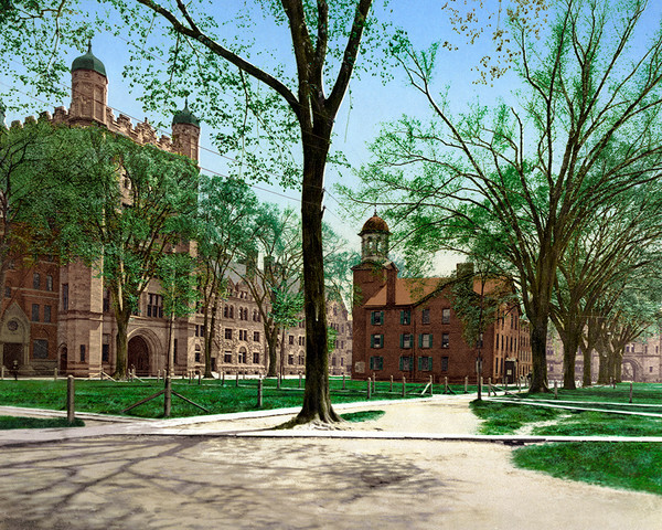 Phelps Hall And Lyceum, Yale College
