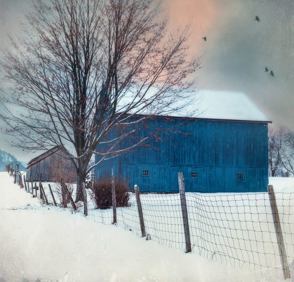 Bucolic winter barn art prints
