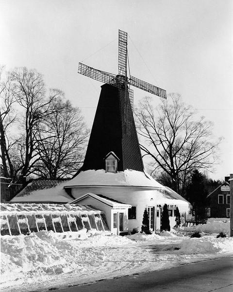 Windmill Florist