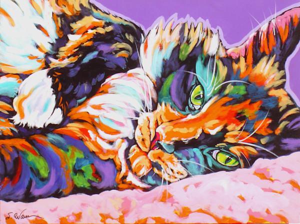 Cat 8x10 paper prints