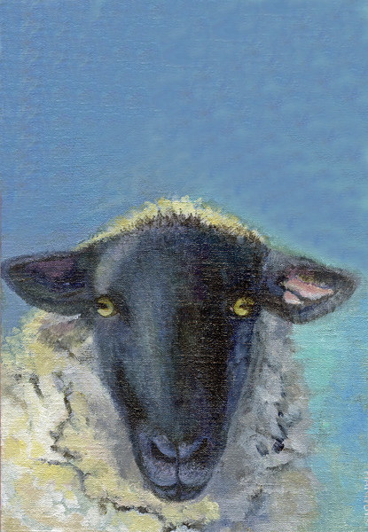 Who Are Ewe