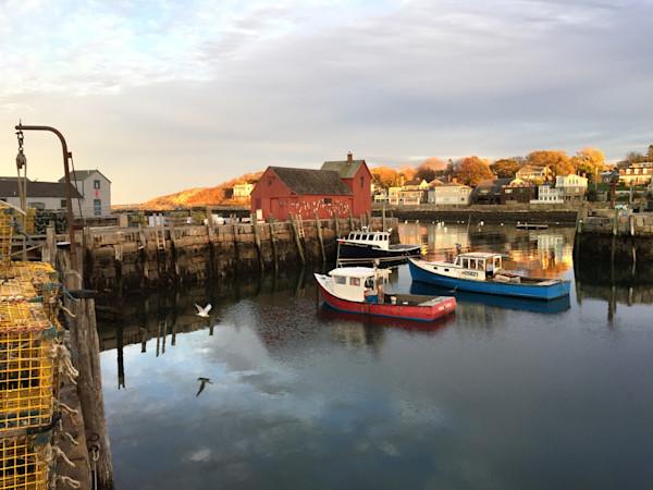Rockport Harbor Motif #1 Gull Lobster Boats Headlands