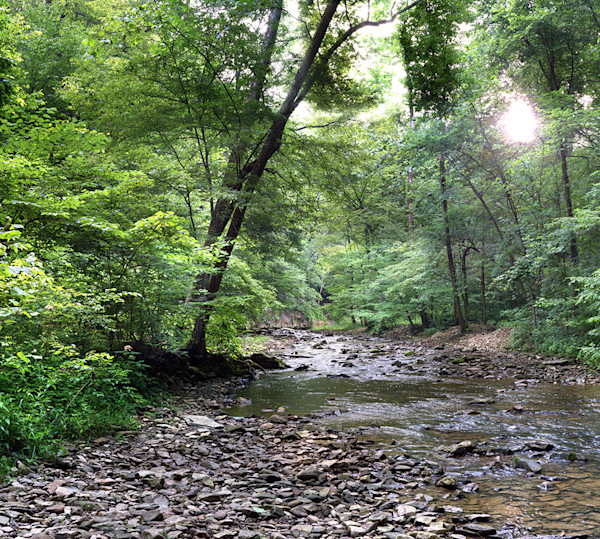 McCormick's Creek State Park : gallery046