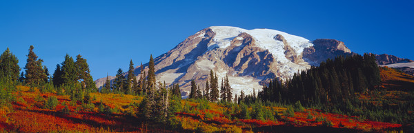 Autmun colors and majest Mt. Rainier