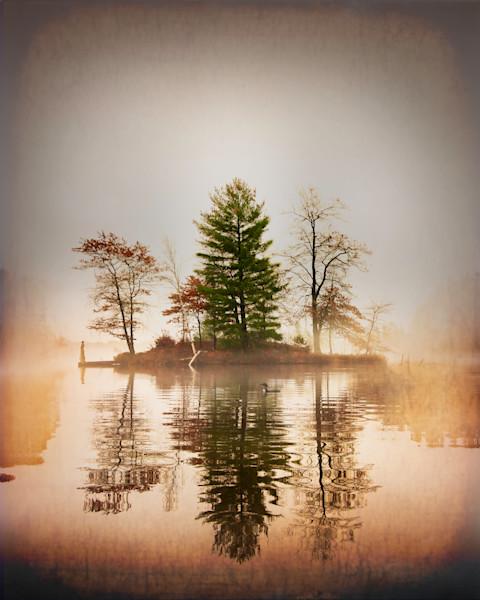 Loon on Misty Lake