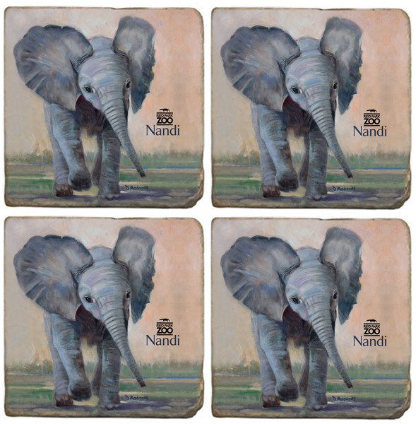 Little Nandi Coaster Set