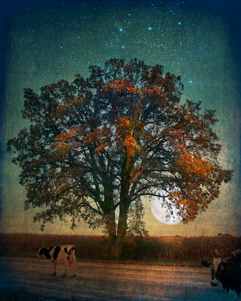 Tree, Moon, Cows and Bird