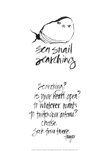 Sea Snail Searching Meditation