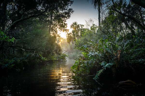 Photography, Florida, Chassahowitzka River, Landscape, Dawn, Morning