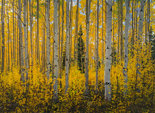 Aspens, Autumn, Fall, Painting, Landscape, Acrylic, Southwest, New Mexico, Sangre de Cristo Mountains
