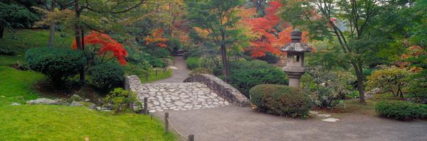 Fall colors, Japanese Garden, Washington Arboretum, Seattle, WA