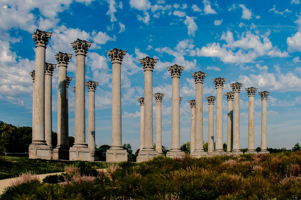 A Fine Art Photograph of the Arboretum Capitol Columns by Michael Pucciarelli