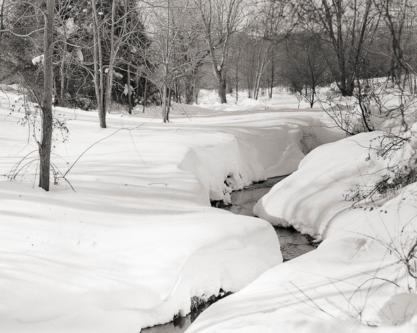 Loudoun Stream in Winter