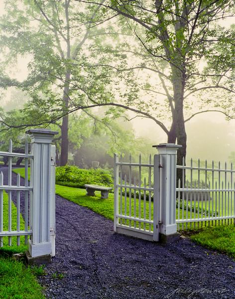 Garden Gate in Fog