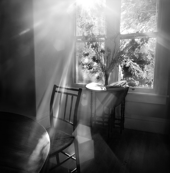The Sweet Light-bw