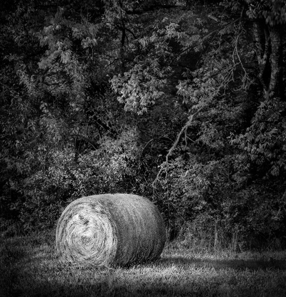 Bring home Kansas in the Fall with this fine art black and white photograph of a hay bale by David Zlotky
