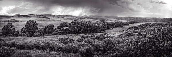 Rain in the Ranch Land, northern Colorado - bw