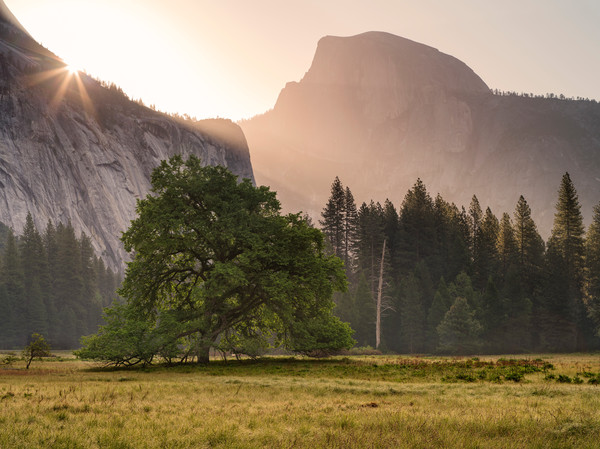 Daybreak in Yosemite Valley