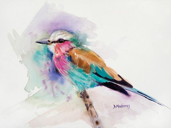 Jim's Bird