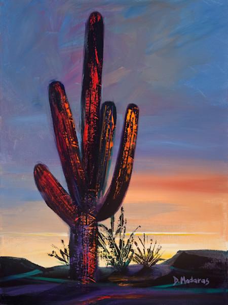 Saguaro at the Ranch