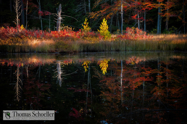 Nature inspired fine art/Painterly reflections, autumn colors, shadow and light interact in this New Hampshire wall art concept
