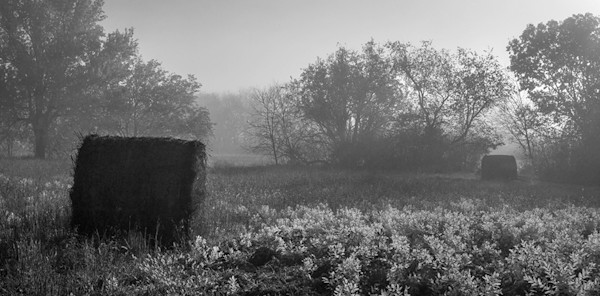 Hay Bales in Autumn Fog - bw