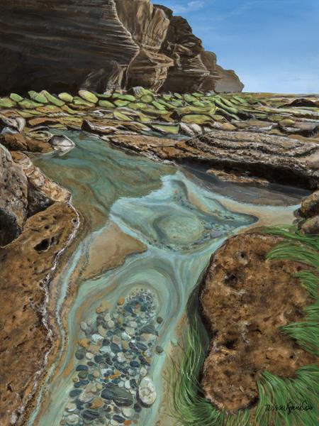 Aqua Tide Pool